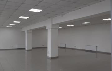 Продам нежилое помещение пр. Московский «красная линия» 533 м2